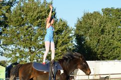 East Anglia Equestrian Fair girl  standing on horseback waving to crowd Stock Photo