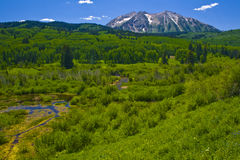 East Beckwith Mountain. From Kebler Pass near Crested Butte, Colorado. This is the location of the largest Aspen forest on earth Stock Image