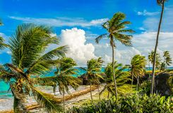 East Coast Barbados Ocean view Stock Photos