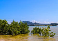 East coast of phuket Royalty Free Stock Photography