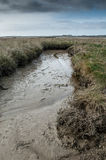 East coast salt marsh Royalty Free Stock Images