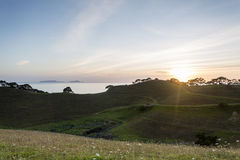 East Coast Sunrise. Sunrise over farmland on the east coast of New Zealand royalty free stock images