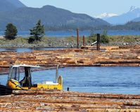 Sorting Log Booms, Sayward, British Columbia. On the east coast of Vancouver Island, BC, Canada, logging remains one of the main industries. Tug-type boats push stock photo