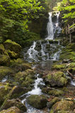 East Coast Waterfall. Waterfall surrounded by large moss covered blouders, located in the Bay of Fundy area of the New Brunswick Stock Photos