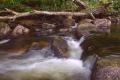 East Dart River Stock Photo