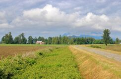 Free East Dyke In Fraser Valley Stock Photography - 186869992