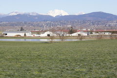 East Fraser Valley Farm Land Stock Photo