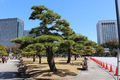 East Garden Imperial Palace Tokyo Japan Stock Photography