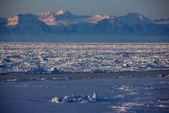 East Greenland pack ice during winter. Pack ice and dramatic mountains of East Greenland, Scoresbysund, the high Arctic Stock Images