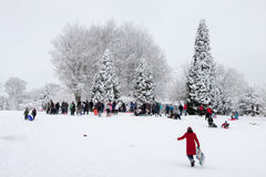 EAST GRINSTEAD, WEST SUSSEX/UK - JANUARY 6 : Winter scene in Eas Stock Photos