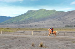 East Java, Indonesia - May 12, 2016 : Unidentified horse riders for rent to Mount Bromo in East Java, Royalty Free Stock Images