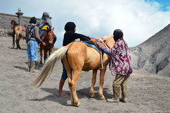 East Java, Indonesia - May 12, 2016 : Unidentified local people or Bromo Horseman waiting for customers at the mountainside of Mou Stock Photos