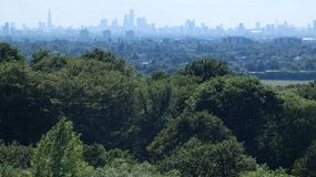 East London Skyline seen above the trees stock image