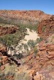 East MacDonnell Ranges, Australia Royalty Free Stock Photo