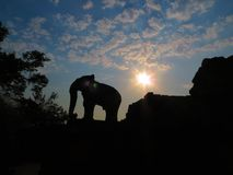 Elephant statue as sun sets in East Mebon Temple, Angkor, Cambodia Stock Images