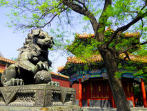 East octagonal pavilion and Bronze Lion. Bronze Lion facing the octagonal pavilion in the east of Hall of Heavenly Kings inside the Lama Temple Beijing China Royalty Free Stock Images