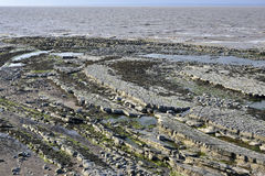 East Quantoxhead Beach. At low tide, Kilve, West Somerset Coast Stock Photography