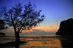 East Railay Beach in the morning. Sunrise at East Railay Beach Stock Image