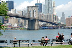 East River Benches Stock Image
