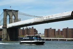 East River ferry boat under Brooklyn Bridge Royalty Free Stock Photo