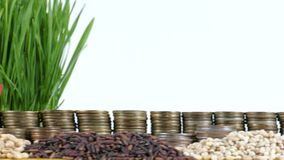 East Timor flag waving with stack of money coins and piles of wheat. And rice seeds stock footage