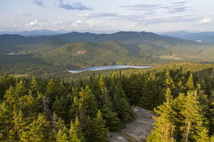 East View from Blue Mountain Fire Tower Stock Photography