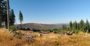 East view from Cerna hora mountain in Sumava Stock Photography