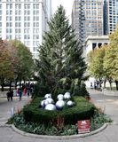 East View of Official Chicago Christmas Tree stock image