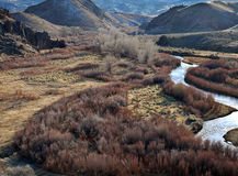 East Walker River in Western Nevada. View from above the East Walker River in Western Nevada Royalty Free Stock Photos