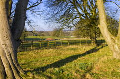 East Yorkshire Country Estate Parkland Royalty Free Stock Images