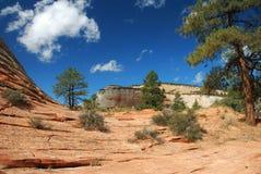 East Zion Landscape Stock Image