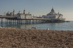 Eastbourne, Anglia, East Sussex UK - plaża i molo obraz royalty free