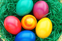 Easte Eggs. Colourful easter eggs in a nest Stock Photos