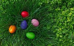easter ägg gräs green Arkivfoto