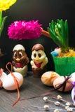 easter ägg med det gulliga färgbandet och choklad chiken dekorerat med blomman - tulpan och geocint Royaltyfri Foto