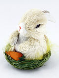 Easter Imagens de Stock
