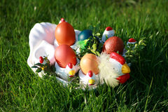 Easter. Chicken with painted Easter eggs Stock Photos