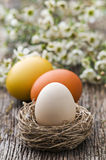 Easter Stock Photos