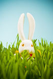 Easter. Bunny in green grass Royalty Free Stock Image