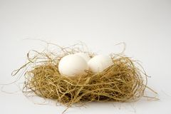 Easter. White easter eggs in birds nest, white background Royalty Free Stock Image