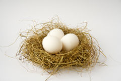 Easter. White easter eggs in birds nest, white background Royalty Free Stock Images