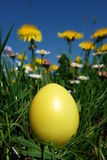 Easter Foto de Stock Royalty Free