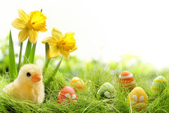 Free Easter Stock Images - 38767514