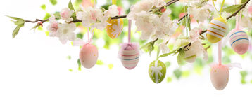 Free Easter Stock Image - 49977601