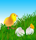 Easter-5 Royalty Free Stock Image
