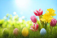 Free Easter Stock Photo - 50737230