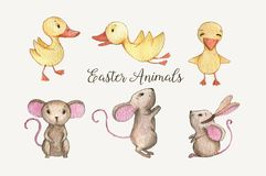 Easter Animals. Hand-drawn watercolor Easter animals. Beautiful ducklings and the mice characters isolated on the white background Royalty Free Stock Photos