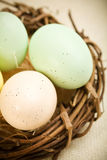 Easter Arrangement Stock Images