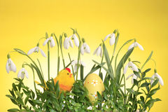 Free Easter Arrangement Stock Images - 8760744