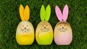 Three bunnies on green grass royalty free stock image